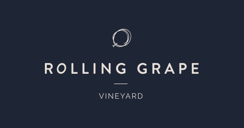 Rolling Grape Vineyard